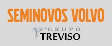 Logo Treviso Viking Center