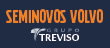 Treviso Viking Center logo