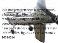 MASSEY FERGUSON MF 275  2000/2000 Agrinegócios