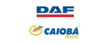 caiobá trucks - daf