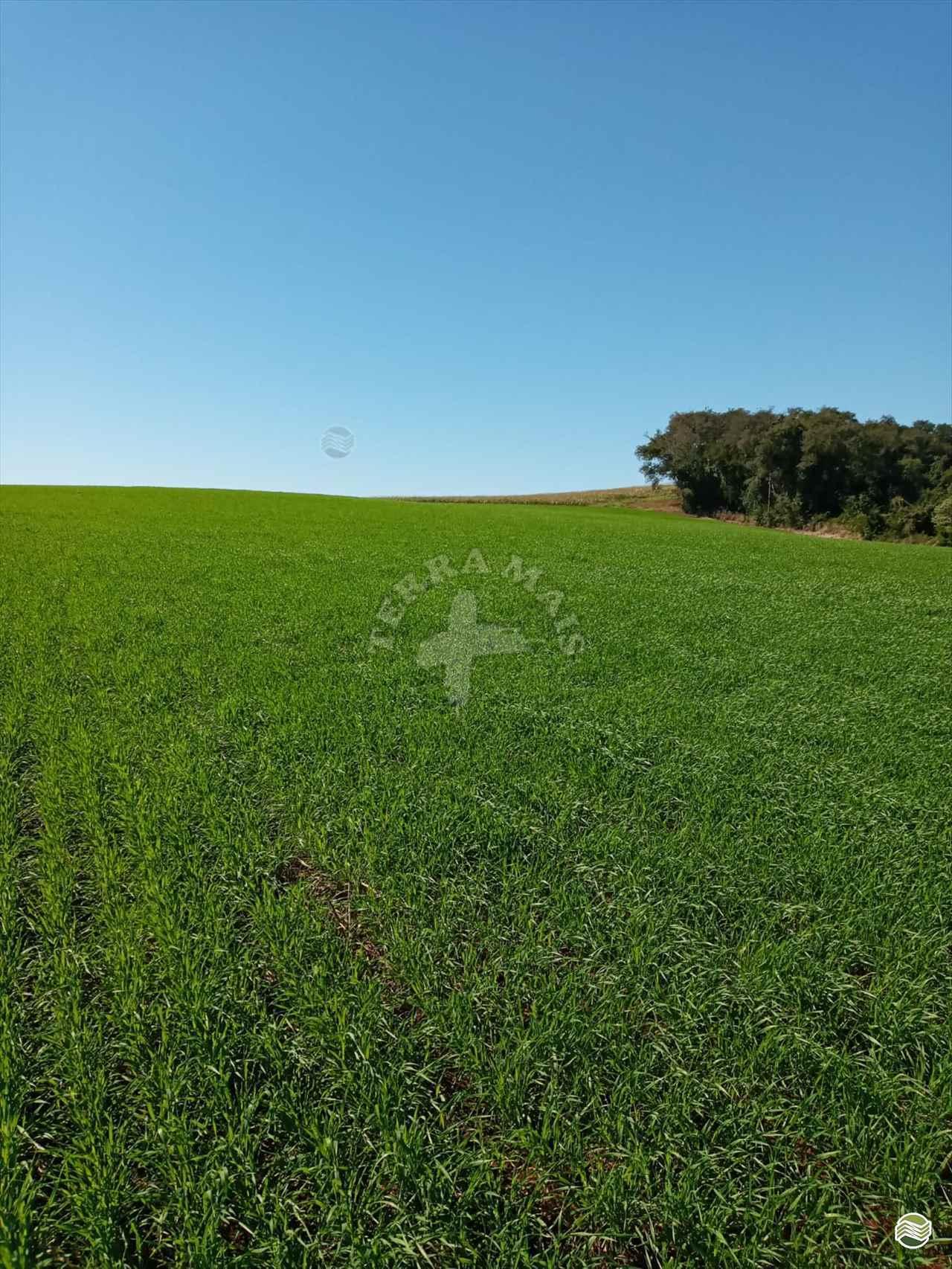 IMOVEIS IMÓVEIS SITIOS Terra Mais Implementos Agrícolas TOLEDO PARANÁ PR