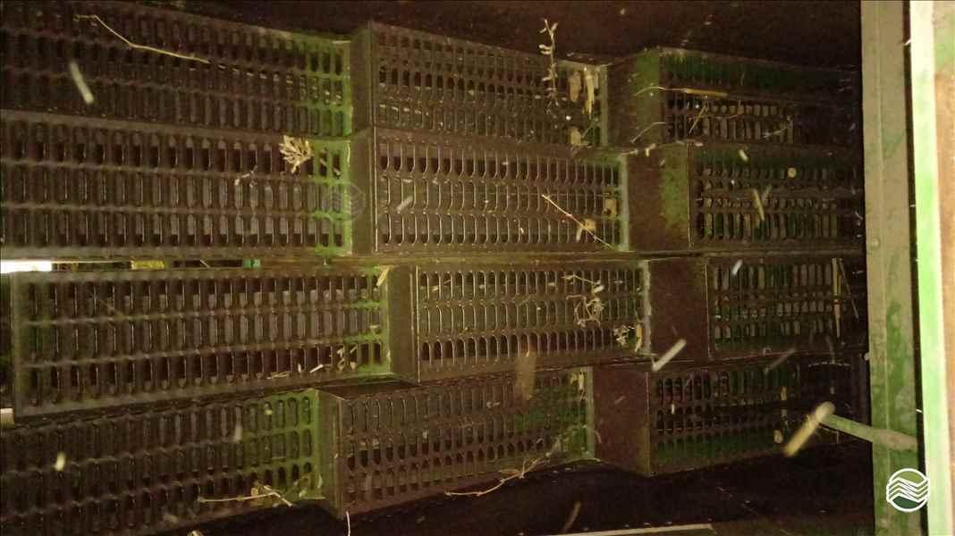 SLC SLC 6200  1987/1987 Trevo Máquinas e Peças - Kuhn