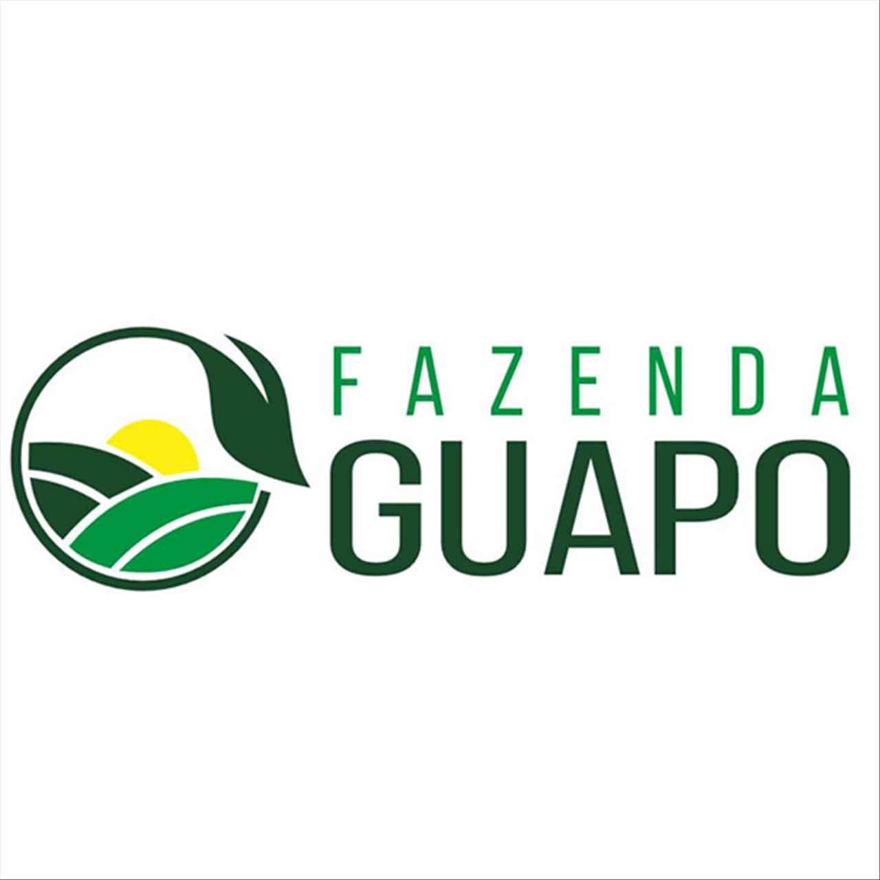 Fazenda Guapo Agropecuária