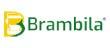 Grupo Brambila logo