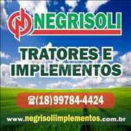 GRADE NIVELADORA NIVELADORA 68 DISCOS  2002 Negrisoli Implementos