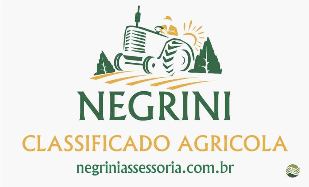 Foto da Loja da Negrini Plantadeiras