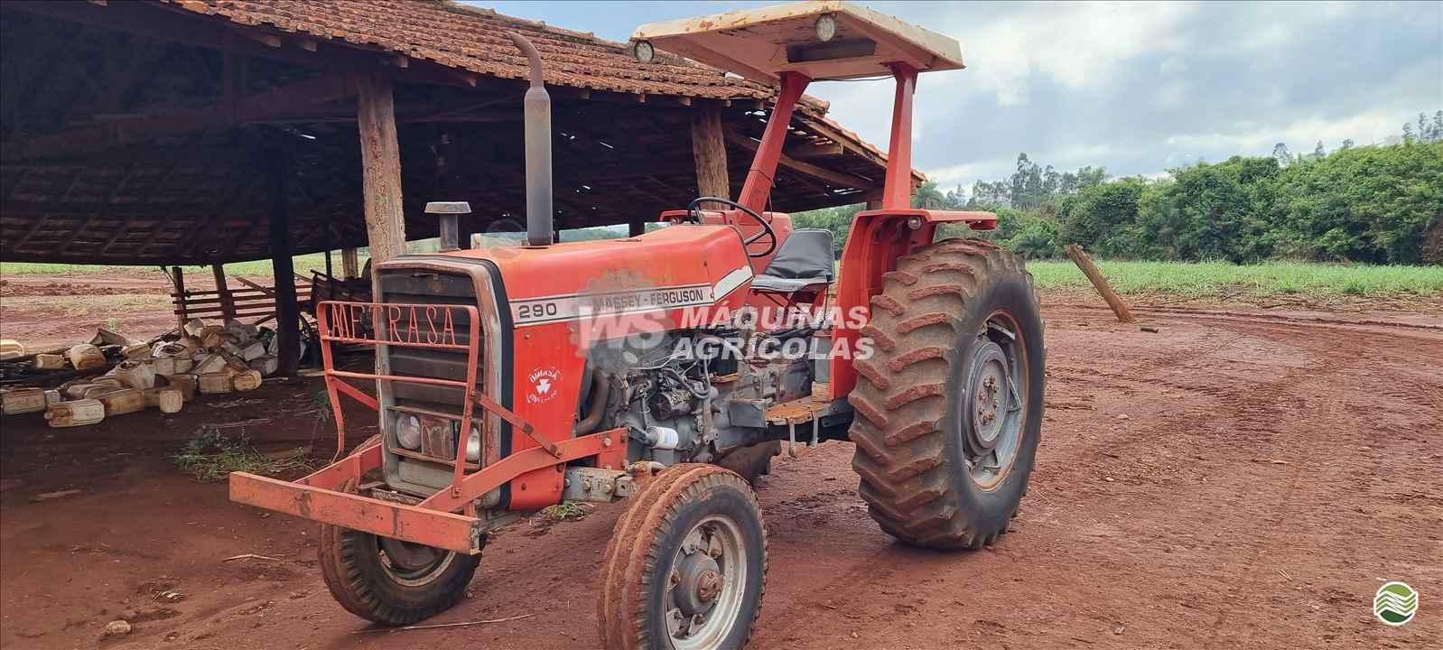 TRATOR MASSEY FERGUSON MF 290 Tração 4x2 WS Máquinas Agrícolas SERTAOZINHO SÃO PAULO SP