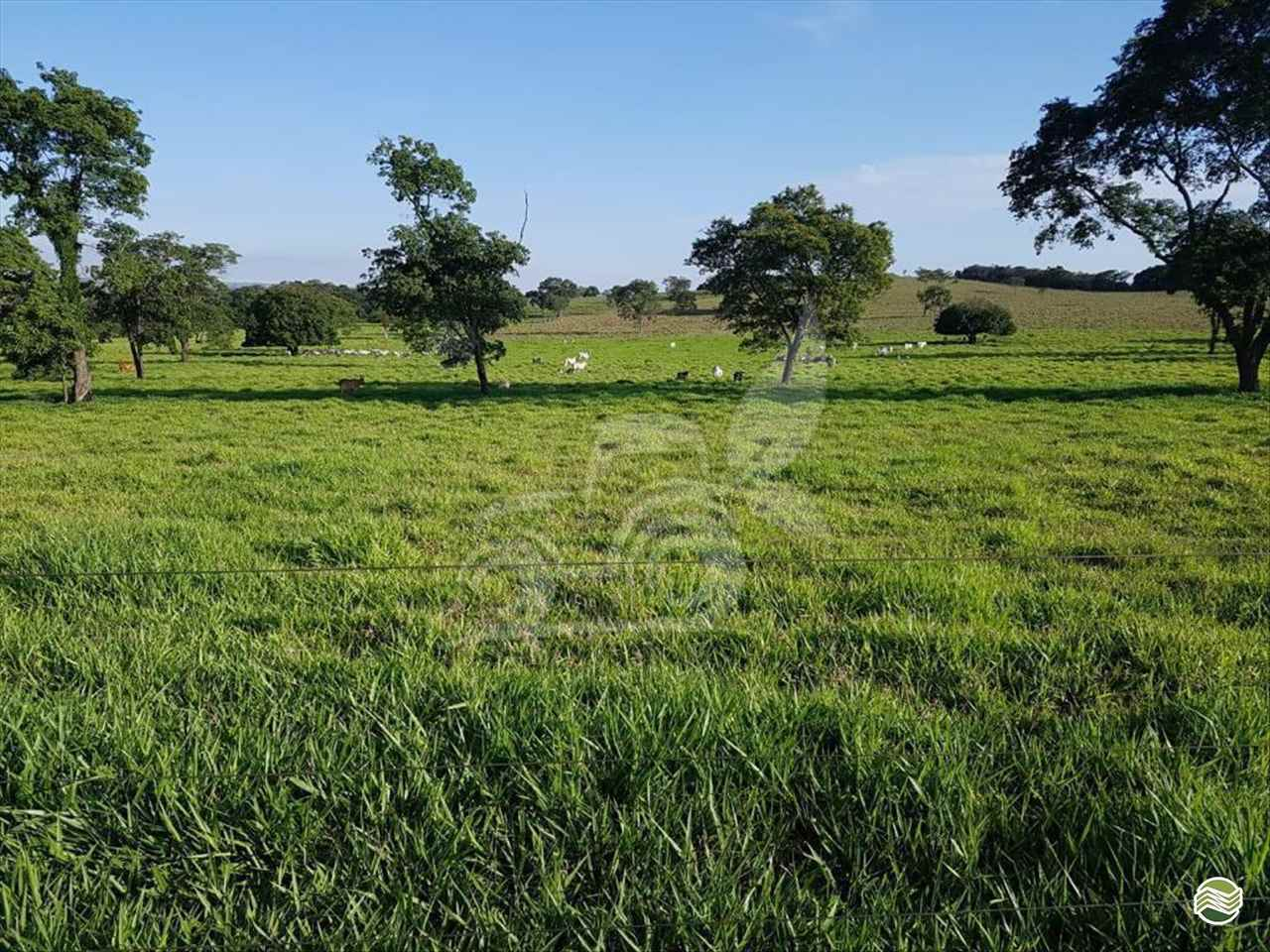 FAZENDAS de EP Máquinas e Implementos Agrícolas - CRISTALINA/GO