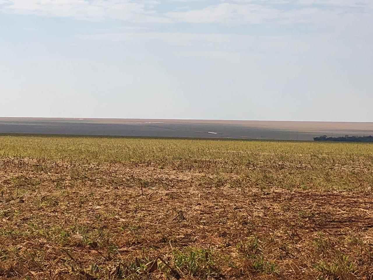 lucas-do-rio-verde%2fmt%2farea-a-venda-em-nova-mutum%2f%2f%2fagrimaq-maquinas-e-implementos-agricolas%2f1565